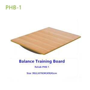 Lower Extremities Balance Training Board-PHB1