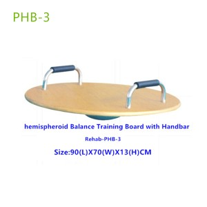Lower Extremities Round Balance Training Board-PHB3