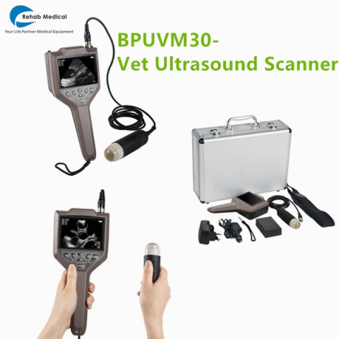 pig ultrasound,veterinary ultrasound equipment,veterinary ultrasound,sonoscape ultrasound,mindray ultrasound,ultrasound machine for pregnancy,dog pregnant ultrasound scanner,dog ultrasound machine,ultrasound machine price,
